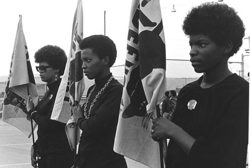 BLACK PANTHERS: VANGUARD OF THE REVOLUTION (Stanley Nelson)